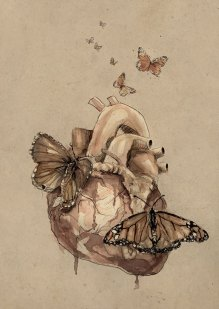 Butterflies_Manuscritos de Heart Mountain_ Diario de amor de una bruja_
