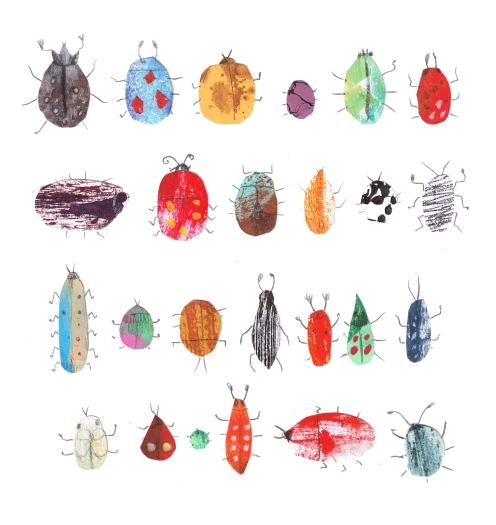 aserra_insectos