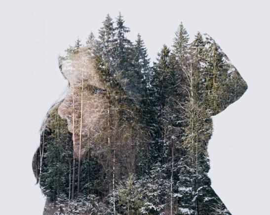 last-of-winter, 2013, Finland, winter edition