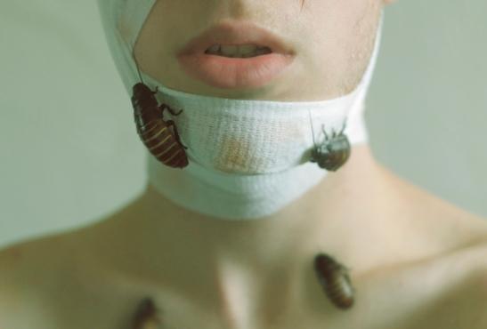 2.Plague I
