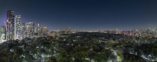 central_park_night_new_york_2015._250x113_cm